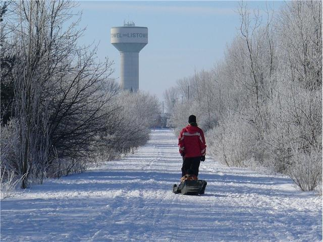 Trail in winter with Sled.jpg